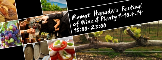 Festival of Wine & Plenty 2014 Banner - English